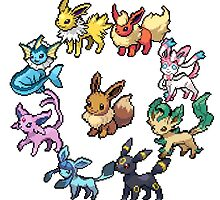 Eeveelution circle by andcrsxn