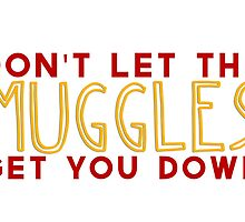 Don't Let The Muggles Get You Down by obliviate