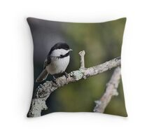 Black-capped chickadee perched on a branch Throw Pillow