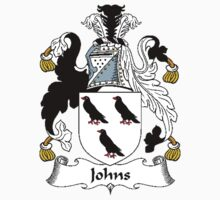 Coat of arms (family crest) for last-name or surname Johns . Heraldry banner for your name. Kids Clothes
