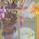 Sweet Dreams Window by Mary Taylor