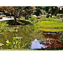 Reflections in the Garden Photographic Print