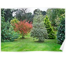 Leith Hall Gardens 2 (Huntly, Aberdeenshire, Scotland) Poster