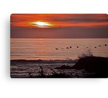 Flight Of The Birds During Sunset Canvas Print