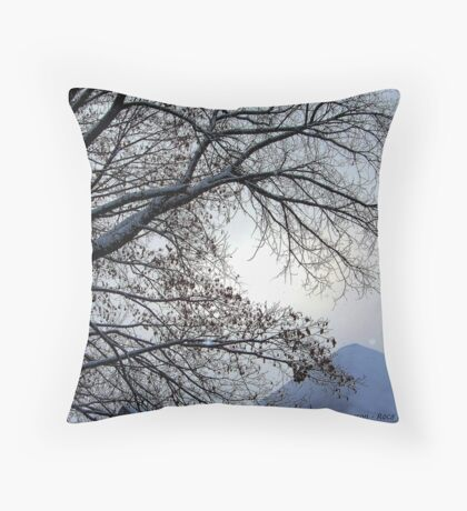 Sunset in a Snowstorm Throw Pillow