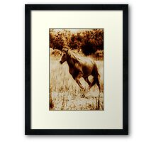 Bachelor 2: Collaboration with George Lenz Framed Print