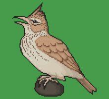 Pixel / 8-bit Crested Lark Kids Tee