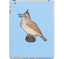 Pixel / 8-bit Crested Lark iPad Case/Skin