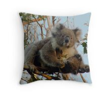 Koala family - Great Ocean Walk, Cape Otway Throw Pillow