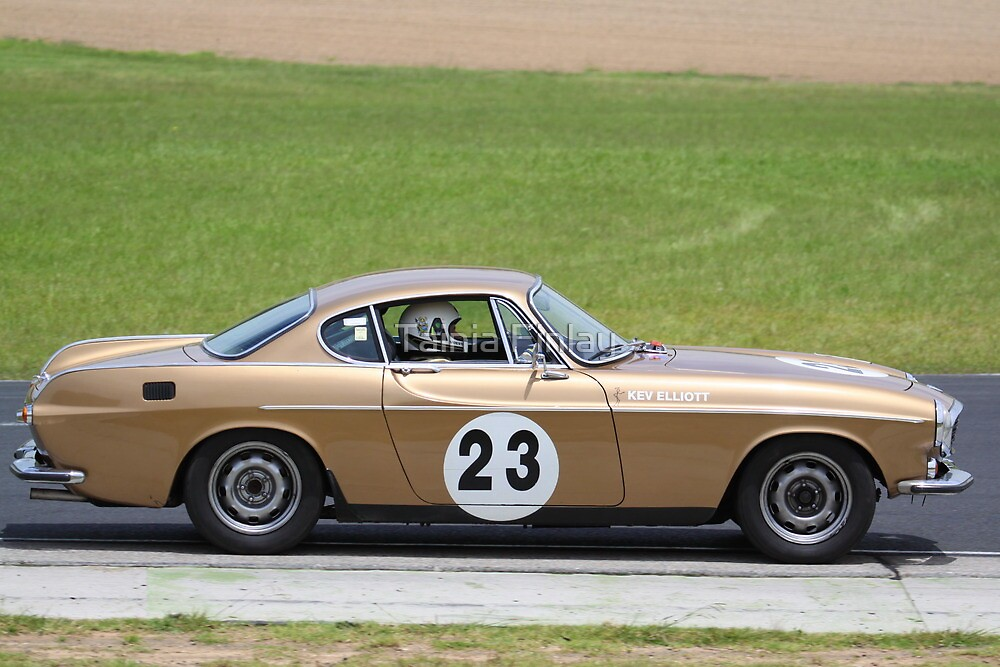 Eastern Creek Tasman Revival 2010 1969 Volvo P1800E by Tainia Finlay