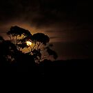 Glowing night by b-ny