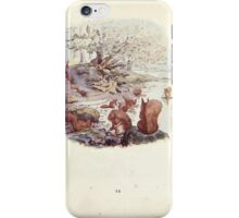 The Tale of Squirrel Nutkin Beatrix Potter 1903 0014 Nutkin and Twinkleberry at the Lake's Edge iPhone Case/Skin