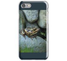 AMONG ROCKS iPhone Case/Skin