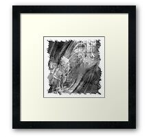 The Atlas of Dreams - Plate 14 (b&w) Framed Print