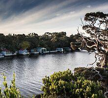 Glenelg River by Merridy Lindner
