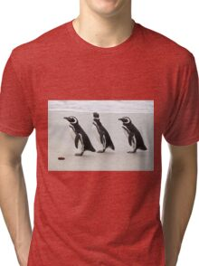 Magellanic Penguins on the Beach Tri-blend T-Shirt
