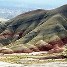 View No. 8 Painted Hills - John Day Fossil Beds National Monument, Grant County, OR by Rebel Kreklow