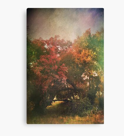 Please Let There Be Magic On The Other Side Canvas Print