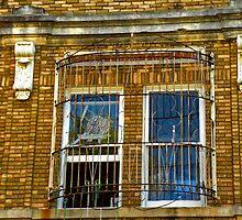 Rear Window by designerbecky