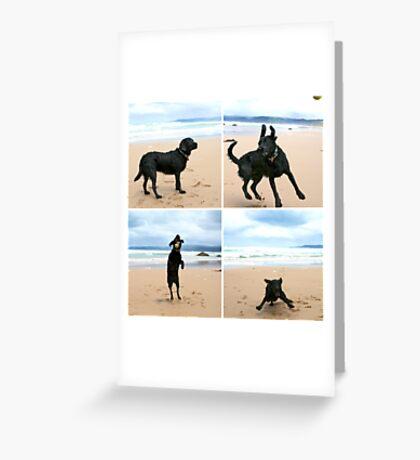 Omar at Apollo Bay Greeting Card
