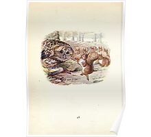 The Tale of Squirrel Nutkin Beatrix Potter 1903 0050 Danced Like a Sunbeam Poster