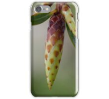 Spring Awaits! iPhone Case/Skin