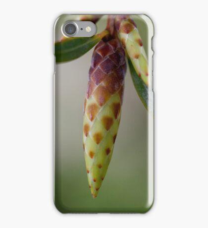 Spring Awaits! iPhone Case/Skin