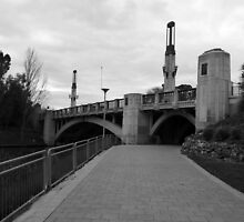 King William Street Bridge, Adelaide by Caroline  Lloyd