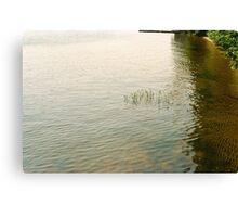 Upper Saranac Lake Shore Canvas Print