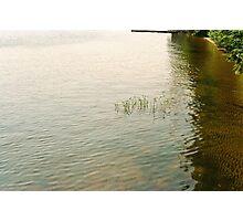 Upper Saranac Lake Shore Photographic Print