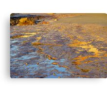 Pools of Gold Canvas Print