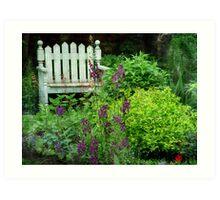 Garden Bench & Verbascum Art Print