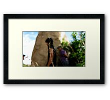Right Through the Web Framed Print