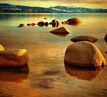 Tahoe Zen by Barbara  Brown