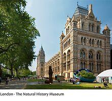 UK - London's Natural History Museum by macondo