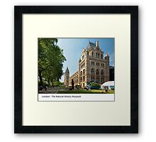 UK - London's Natural History Museum Framed Print