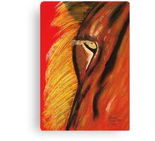 Eye of Lion Canvas Print
