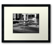 Romance with Vinyl Framed Print