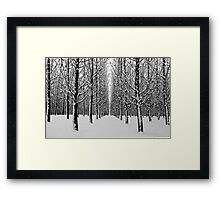 Winters point of view Framed Print