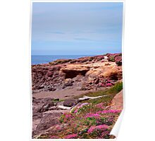 Spring Flowers On The Beach Poster
