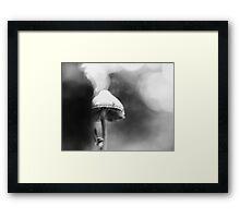 The Ballerina Framed Print