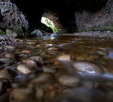Oparara Limestone Arch by Michael Treloar