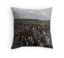 Hercules Bay Throw Pillow