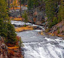 Firehole River - Yellowstone National Park by laurasonja
