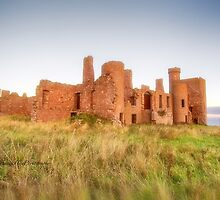 New Slains Castle in Red Fescue Grasses (Cruden Bay, Aberdeenshire, Scotland) by Yannik Hay