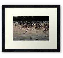 Subtle reflections Framed Print