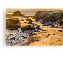 BIG SUR SOLITUDE Canvas Print