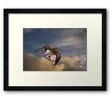 Raptor Whistle Framed Print