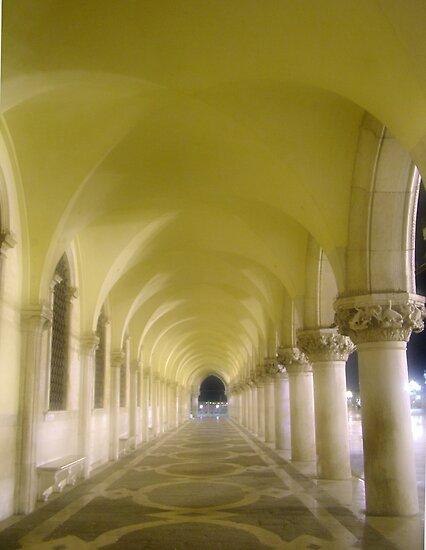 Palace of the Doge, Venice by Blake Steele
