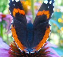 Butterfly bokeh Sticker